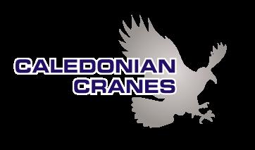 cal-cranes-eagle-flat